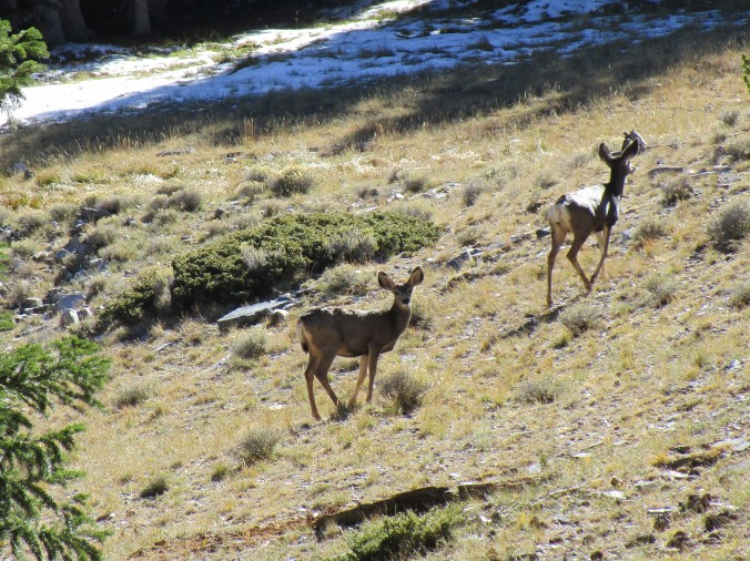 Oct. 7 Great Basin (25)